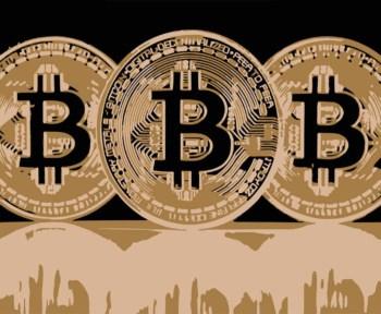 top 100 grootste bitcoin adressen